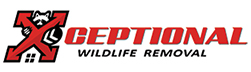 Burlington Wildlife Removal